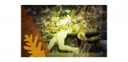 MLB Video Frame-1